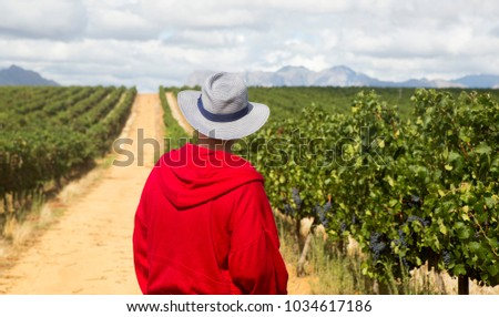 A man in a hat and red jacket looks out over the horizon of a lush green vineyard with ripe black grapes and a gravel road. In the background are clouds and mountains.