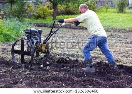 A man in a light jacket and jeans in the garden harvests potatoes using a cultivator. Agricultural work in the garden in the fall. #1526596460