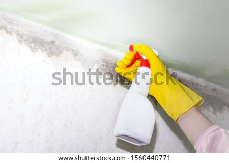 a man in yellow gloves sprays a means of mold and other pests on the walls and corners of the house #1560440771
