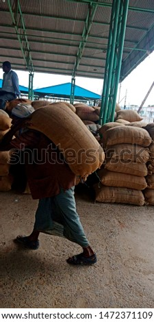 a man is delivering wheat sack at wholesale godown district Katni Madhya Pradesh in India shot captured on Aug 2019 #1472371109