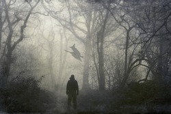 A man looking at a witch flying on a broomstick on a spooky winters day in a forest. With a grunge, artistic edit.