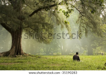 A man relaxing on grass bathed in soft morning sunlight.