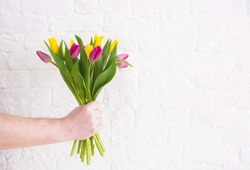 A man's hand holds a beautiful bouquet of tulips against a white brick wall. The concept of the celebration. Greeting card for women's Day on March 8. March 8 and the concept of