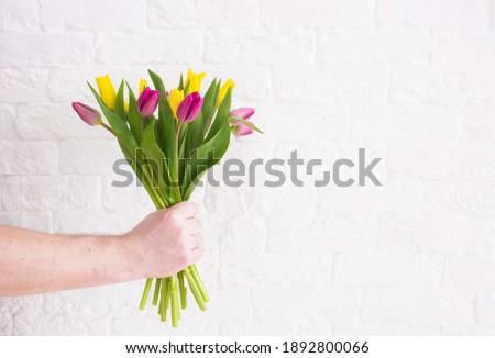 """A man's hand holds a beautiful bouquet of tulips against a white brick wall. The concept of the celebration. Greeting card for women's Day on March 8. March 8 and the concept of """"women's day""""."""