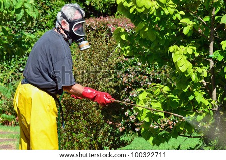 A man sprays plants in the garden. Concept photo of home gardening, business\ , garden work, ,exterminator, agriculture, danger.