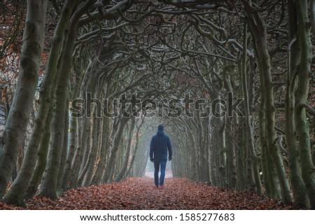 A man walking in a tunnel of trees on a hazy day in autumn.