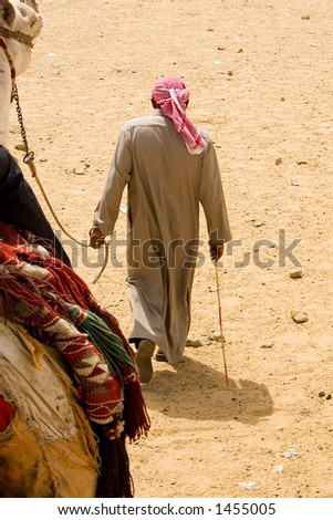 A Man walking with his Camel Location:Giza, Egypt