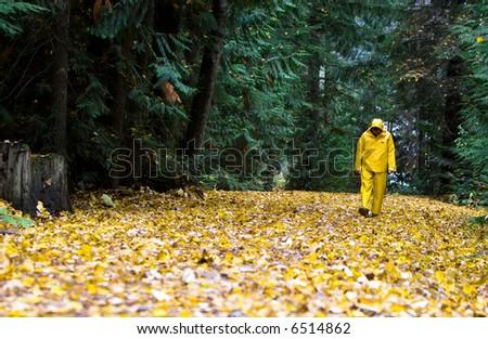 A man walks in the rain on an autumn day through the leaves wearing a yellow rain slicker.