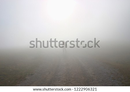 A man walks up the hill in dense fog. On a mountain footpath, height approx. 1300 m.  Hinterstoder, Upper Austria, Europe.