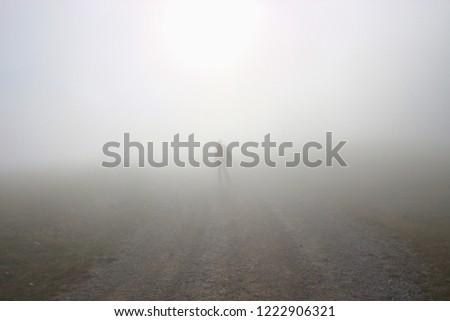 A man walks up the hill in dense fog. On a mountain footpath, height approx. 1300 m.  Hinterstoder, Upper Austria, Europe.