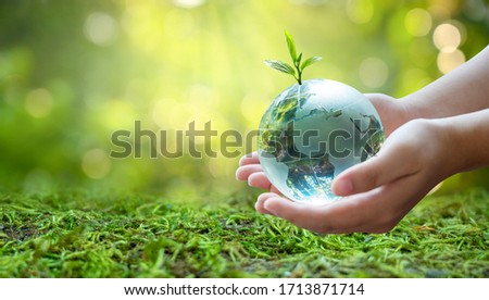 A man with a glass globe Concept day earth Save the world save environment The world is in the grass of the green bokeh background