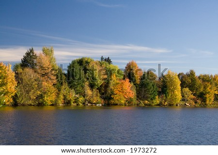 A Maples-rich lakefront in full Fall foliage.