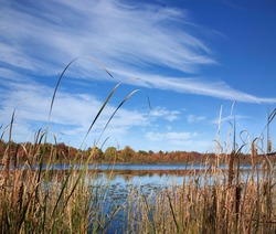 A Marshy Lake Under Brush Stroke Clouds, Lake Sixteen During Autumn, Oakland County Michigan. USA