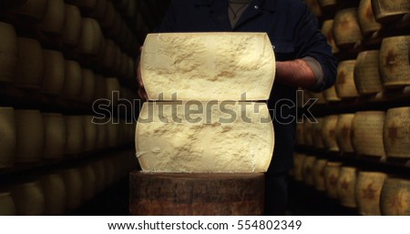 A master cheesemaker, breaks one of the forms of grain to check the seasoning and hear the pros,the Parmesan is a typical Italian cheese good to be grated over pasta. Concept: tradition, italy, cheese