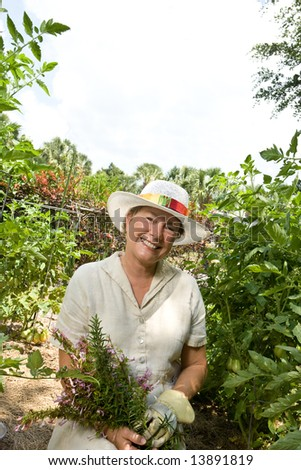 A mature woman picking fresh herbs from her garden, surrounded by tomato plants.