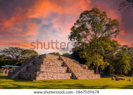 A Mayan pyramid next to a tree at the Copán Ruinas temples in a beautiful orange sunrise. Honduras Foto stock ©