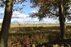 A meadow framed by trees, Gettysburg Battlefield, Gettysburg, Pennsylvania.