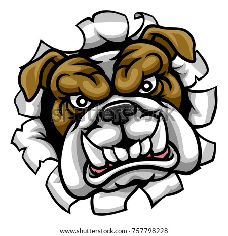 A mean bulldog dog angry animal sports mascot cartoon character breaking through the background
