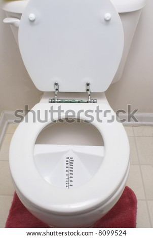 A medical urine hat in a toilet.