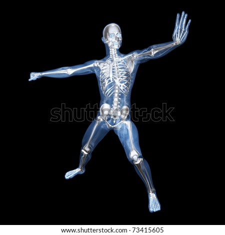 A medical visualisation of human anatomy. 3D rendered Illustration.