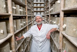 A medium shot of a smiling senior cheese maker standing between the shelves of aged cheddar cheese wheels in a cellar.