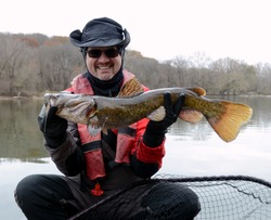 A medium sized brown  colored flathead catfish fish being held horizontally by a smiling man in a dry suit over a net on a river