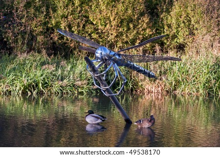 A metal dragonfly statue emerging from water, with two ducks nearby. Photo taken in warm afternoon light near to Hatton Flight of locks on the Grand Union canal.