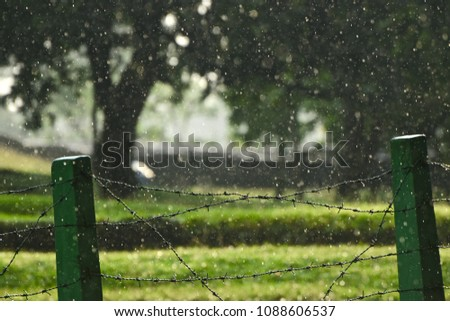 A metallic boundary fence of a garden with heavy falling raindrops isolated unique photograph #1088606537