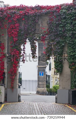 A mews archway in London with leaves reddening in the fall. Mews typically comprise housing converted from former horse stables serving residents in an area before the advent of motorised transport #739259944