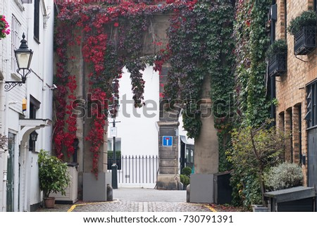 A mews archway in West London with leaves reddening in the fall. Mews typically comprise housing converted from former horse stables serving residents before the advent of motorised transport #730791391