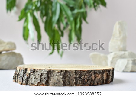 A minimalistic wooden stage and a green branch and stone for the presentation of goods and cosmetics. Showcase with a stage for natural products. Eco-branding.