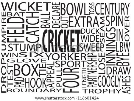 A Mixture Of Cricket Descriptions Cloud Concept