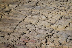 A 300mm zoom in of a rocky surface