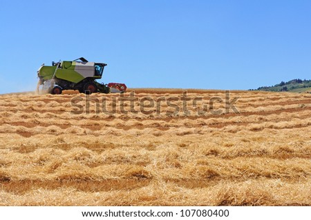 A modern combine harvester, Tuscany, Italy