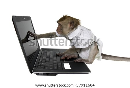 A monkey in a business suit sitting at a laptop