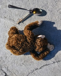 A monkey pricked with a narcotic substance is on the ground..