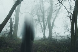 A moody horror edit of a blurred, transparent ghost standing in a forest. On a bleak foggy, winters day.