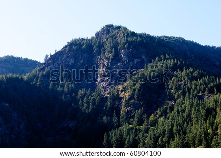 A mountain peak in the Cascade mountain range covered in evergreen trees