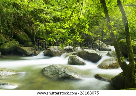 A mountain river with stream falling into it in the morning