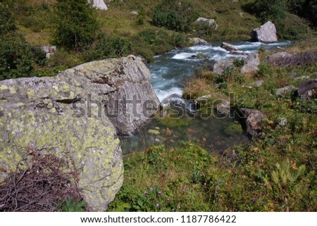 A mountain stream flows with its impetuous waters between the rocks #1187786422