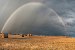 A multicolored rainbow over a sloping wheat field with large rolls of straw