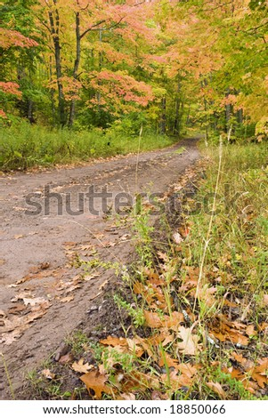 A narrow dirt road winding through the forest with fall colors in the leaves.