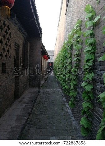 A narrow lane with climbing plants in an ancient city of China