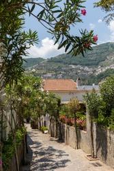 A narrow steep street with blooming oleanders in Ravello. Amalfi Coast. Italy