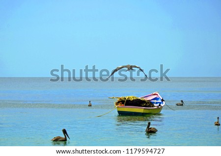 A native Tobago pink, yellow and blue fishing boat piled with yellow rope, orange floats and black nets moored on calm seas surrounded by pelicans and a frigate seabird flying in a clear blue sky. #1179594727