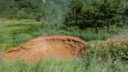 A natural hot spring - a mud pot. There are cracks along the edges. Steam rises above the water. There is lush green vegetation around. Valley of geysers. Kamchatka
