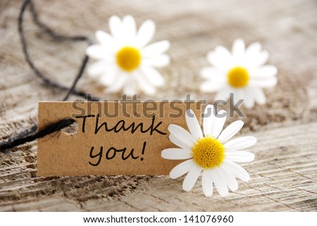 Photo of  a natural looking banner with thank you and white blossoms as background