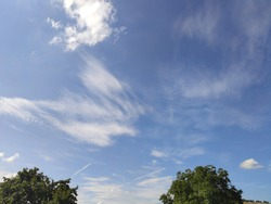 A nature scene with clouds on the blue sky. Tree, cloud, sky.