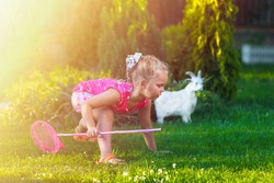 A naughty active little girl playing with pink butterfly net in pink dress in green garden with garden sculpture of a goat. Children protection day concept