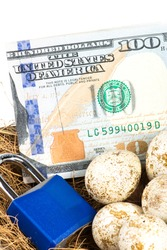 A nest filled with eggs, money and a blue padlock nest egg retirement security concept.